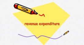 Revenue Expenditure - Taxscan