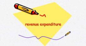 Revenue Expenditure - Taxscan