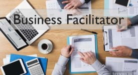 Business Facilitator - GST