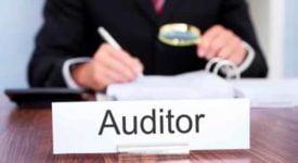 Auditor ICAI