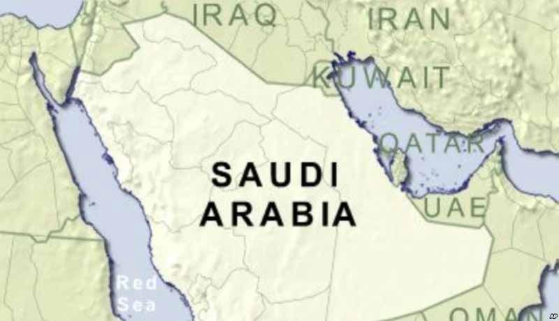 Customs Data - Saudi Arabia - taxscan