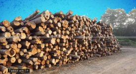 AAR - depositing timber - Depots - AAR - taxscan
