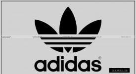 Sponsorship Endorsement - Adidas - Taxscan