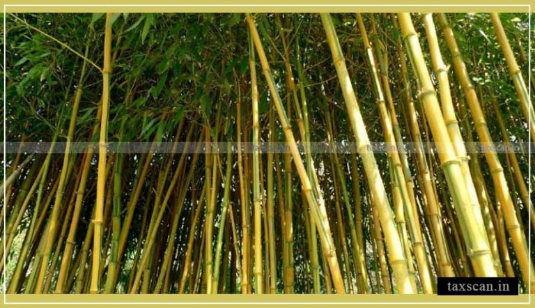 Aatma Nirbhar Bharat: Central Govt. notifies Hike in Custom duty on Bamboo from 10% to 25% [Read Notification]
