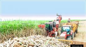 sugar cane - ITAT - TDS -harvesting charges - Taxscan
