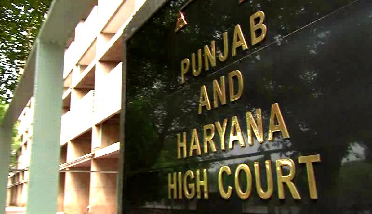 Image result for punjab and haryana highcourt