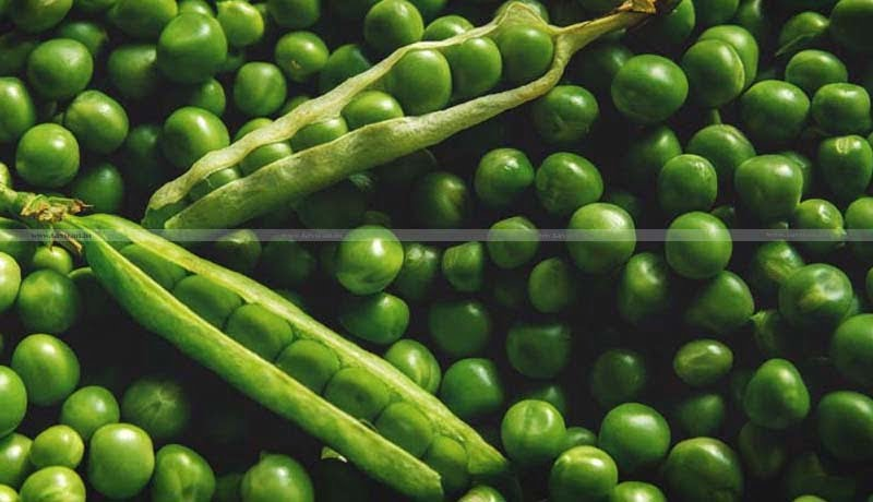 Import policy for Tur - Pigeon Peas - Moong - Urad - Taxscan