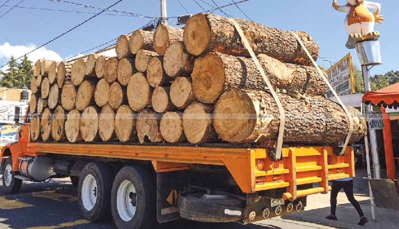 Service Tax - Transporter of Firewood as Carting Challan - Consignment Note - CESTAT - Taxscan